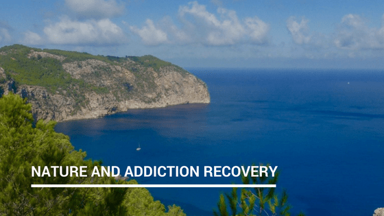 Can nature aid your recovery?