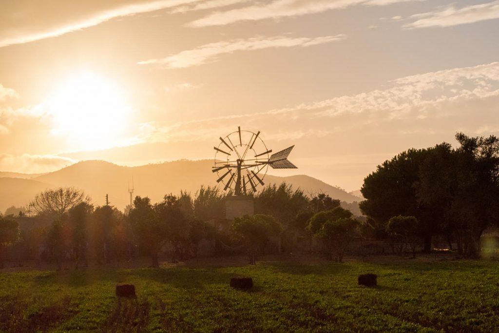 Ibiza Calm Spanish Rehab Off Season