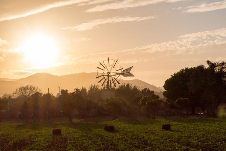 Reasons to Travel to Ibiza Calm 'Out of Season'
