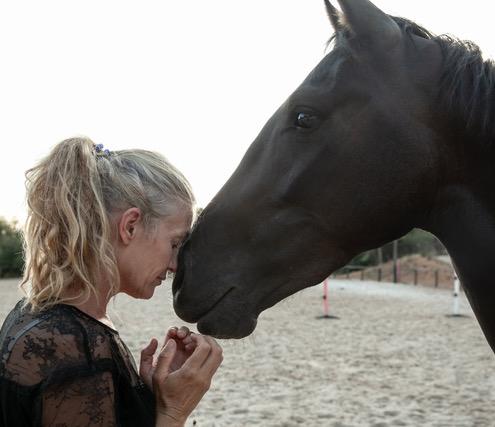 Equine Ibiza Calm 2