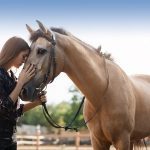 Why we use equine therapy at our rehab in Spain?