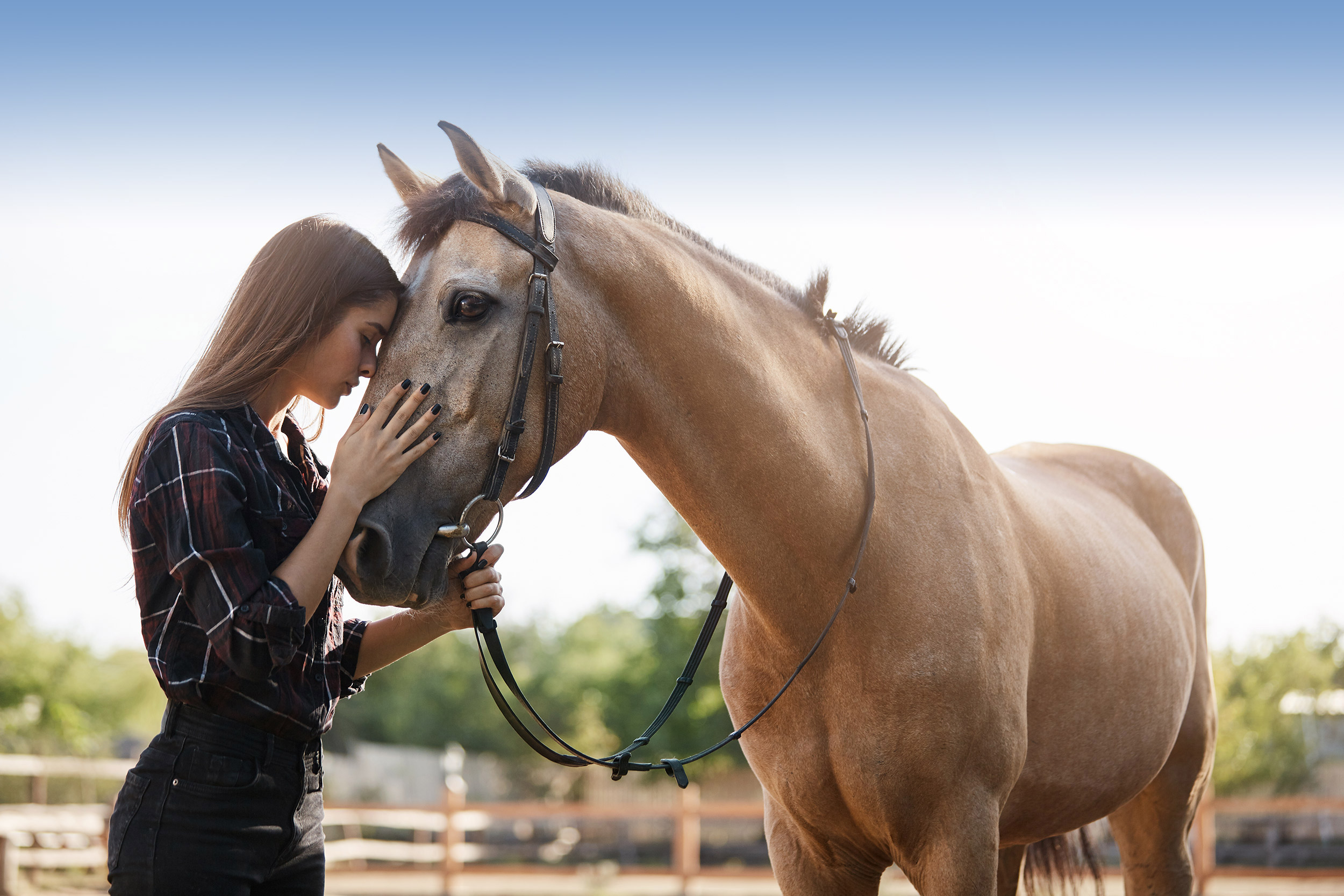 Ibiza Calm - Why we use equine therapy at our rehab in Spain?